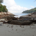 Next to the beach of Nipah Bay on Pulau Pangkor are a handful of guys selling snorkeling outings. We said no for a few days before deciding we should shake up our routine of eating and lazing in the ocean by doing something/anything. The price seemed reasonable so off we...