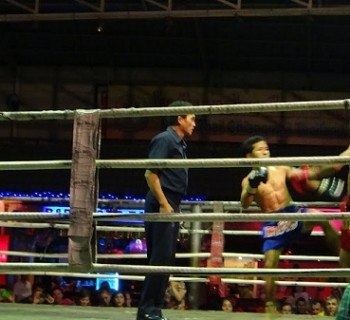 Muay Thai Fight In Action
